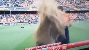 Novinarka se javljala uživo sa Mestalle, a onda je lopta pogodila u glavu!