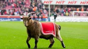 Simbol Bundeslige više nije sa nama: Koln objavio tužne vijesti za navijače