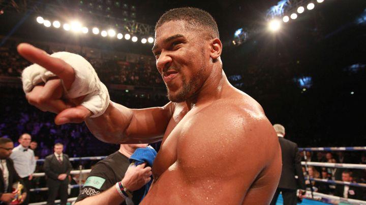 Joshua odgovorio UFC borcima koji ga prozivaju
