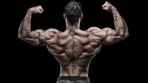 Dvije vježbe dovoljne za razvoj superiornih leđa