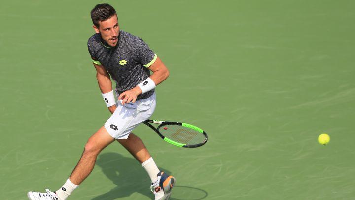 Plasman karijere Damira Džumhura, napredak Federera