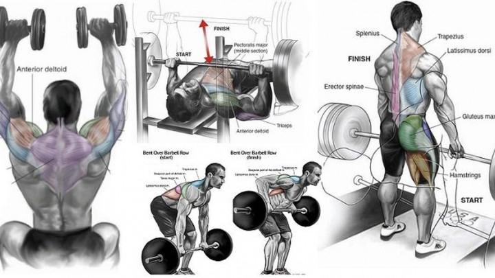 Sve što vam treba: Najbolji trening programi sadrže samo ovih osam vježbi