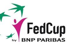 FED Cup: BiH sa Hrvatskom i Mađarskom