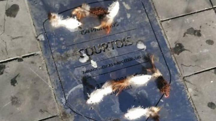 Courtoisa dočekali mrtvi miševi