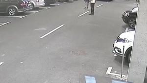 Objavljena snimka: Pogledajte kako je Grezda šakom udario napadača Rijeke