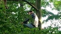 Navijači skriveni na drvetu pokušali da gledaju meč Bundeslige