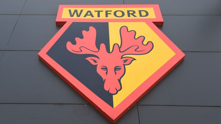 Gazde Watforda ne žele izazvati haos kao svojevremeno Vincent Tan