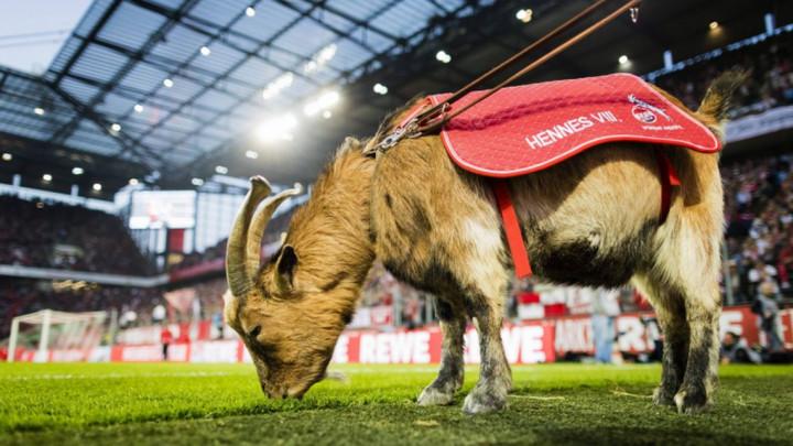 Bundesliga je nastavljena, ali mnogi su nezadovoljni: Jarac ostao kod kuće, navijači vidno ljuti