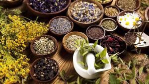 Najljekovitije biljke koje olakšavaju simptome prehlade i gripe