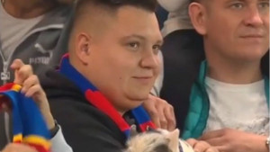 Paradoksalno: Dok negdje navijači ne mogu ni prići stadionu, u Rusiji mogu životinje