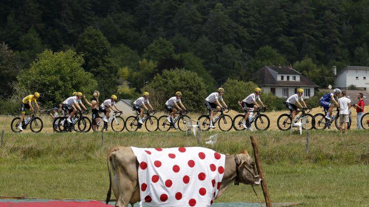 """Ovakve """"gledatelje"""" na Tour de Franceu još niste vidjeli"""