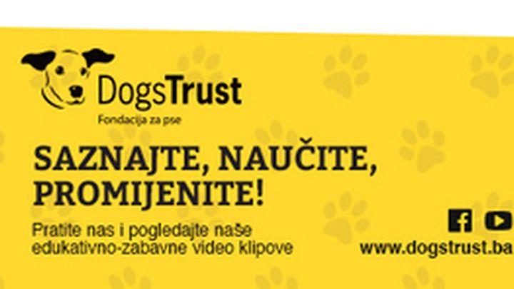 Na ulicama Sarajeva skoro duplo manje napuštenih pasa