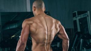 Četiri grupe mišića koje formiraju V-oblik tijela i ključne vježbe za njihov razvoj
