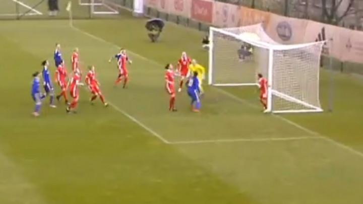 Nevjerovatan gol reprezentacije BiH protiv Rusije
