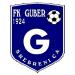 FK Guber