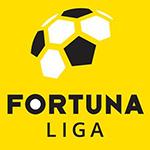 Fudbalska liga Češke